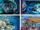 2017, das Jahr der Neuheiten in den SeaWorld Parks  Freuen Sie sich auf beeindruckende Attraktionen in den SeaWorld Parks im kommenden Jahr