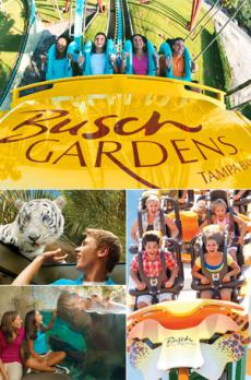 Busch Gardens Tampa Bay Tickets Attraction Tickets Direct