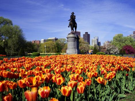 Day Tour to Boston