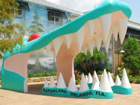 Gatorland & Airboat Safari