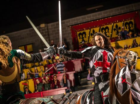 Medieval Times Dinner Show