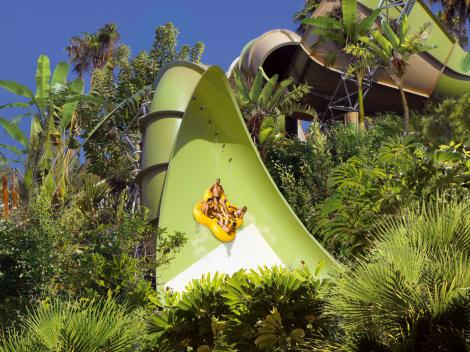 Jungle Snakes attraction - Siam Park