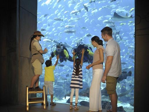 Atlantis Aquaventure