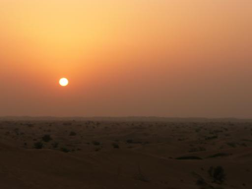 Desert Safari and Sunset Barbecue