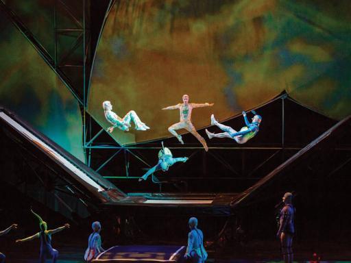 Mystère Cirque du Soleil Tickets