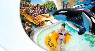 SeaWorld 4 Parks & GRATIS Parken nur €129