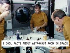 Traumberuf Astronaut? Sehen Sie hier, was Sie erwartet…