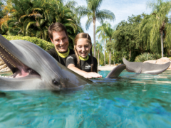 Discovery Cove: Jetzt auch autismusgerecht!