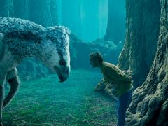 Jetzt neu: Forbidden Forest in den Harry Potter Warner Bros. Studios
