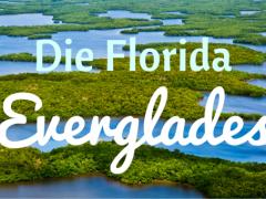 Naturwunder Everglades - Schalten Sie vom Alltag ab
