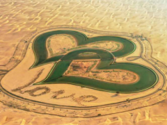 Kostenlose Ausflüge in Dubai Glauben Sie es gibt nichts umsonst in Dubai? Wenn ja, dann liegen Sie falsch.