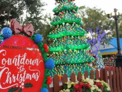 Ihr ultimativer Weihnachtsguide im LEGOLAND Florida Von den ATD Florida-Experten Susan und Simon Veness.