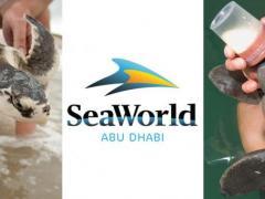 SeaWorld fasst Fuß in den Vereinigten Arabischen Emiraten!