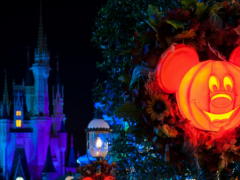Neue Feuerwerksshow bei Mickey's Not So Scary Halloween Party