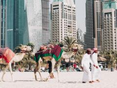 Wann fliegt man am besten nach Dubai?
