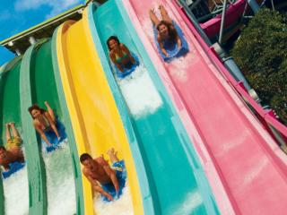 Aquatica® California One Day Ticket