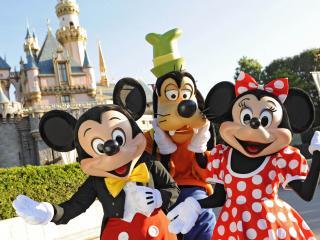2 Tage Disneyland California Hopper Ticket