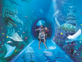 SEA LIFE Orlando Ticket