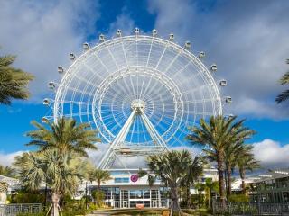 ICON Orlando™ Champagne Experience