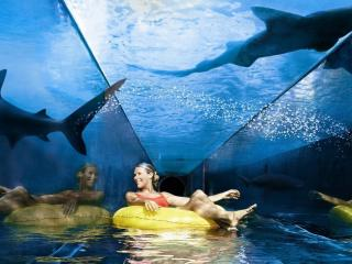 Aquaventure & Lost Chambers Combo Pass