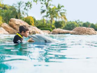 Discovery Cove Package 2021 Early Book