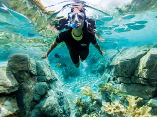 Discovery Cove® Package