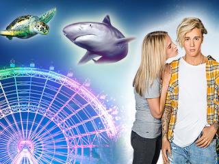 Icon Park Big Three Combo: The Wheel, Madame Tussauds & Sealife Aquarium