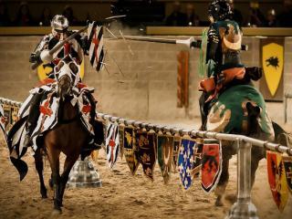 Medieval Times Orlando Dinner Show & Tournament