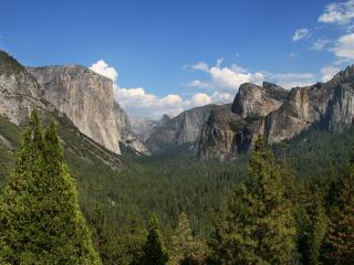 Yosemite National Park in a Day from San Francisco