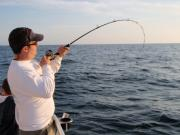 Gulf Coast Deep Sea Fishing A leisurely tour tackling the high seas....