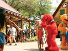 Sesame Street Kids' Weekend Sesamstraßen-Fans aufgepasst! Busch Gardens lädt zum großen Sesamstraßen Kids Festival Ende Mai nach Florida ein!