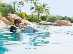 Discovery Cove Package